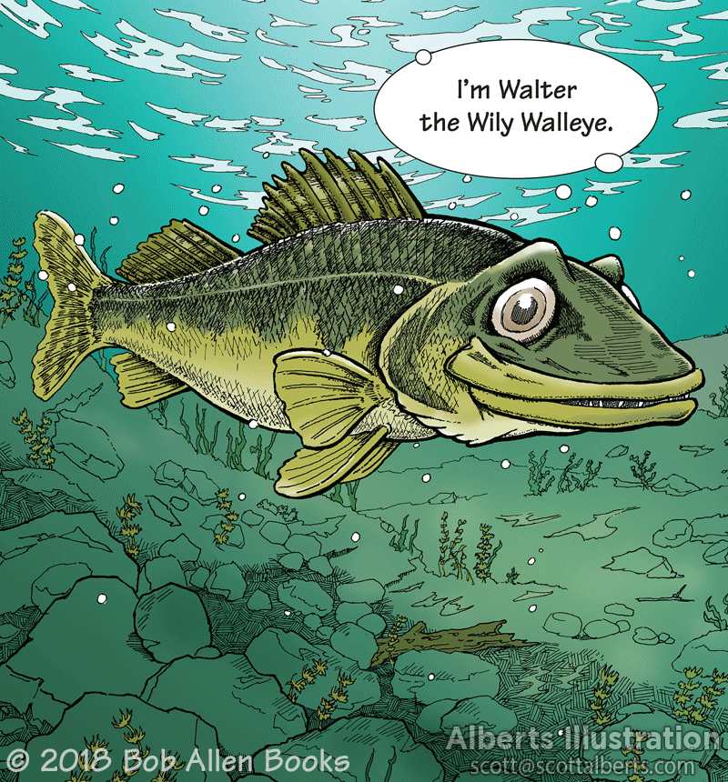 Freelance Illustration - Wally the Wily Walleye - Alberts Illustration