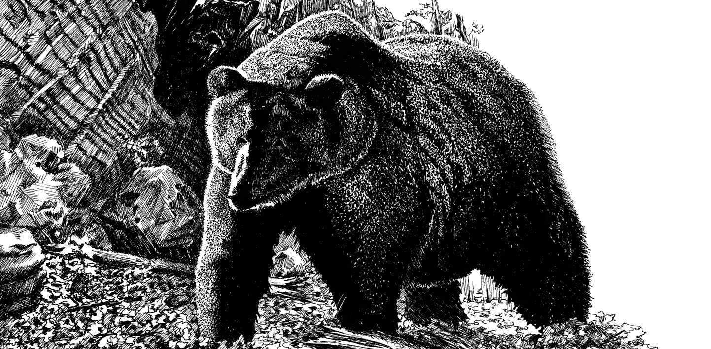 Visually stunning, black and white art is an excellent investment in your marketing