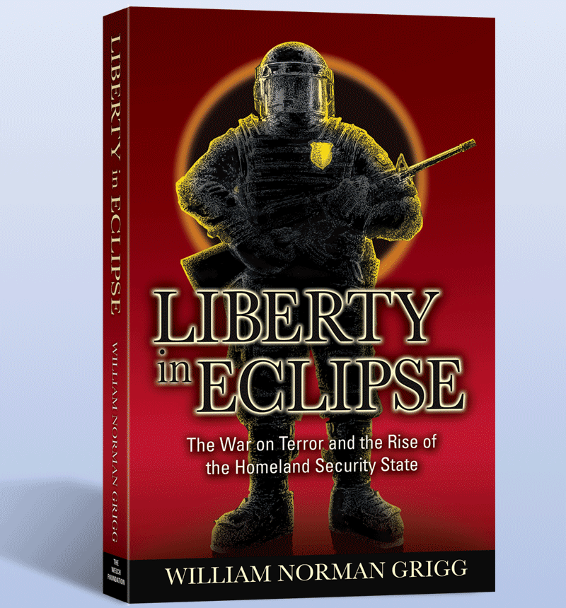 Book Illustration - Liberty in Eclipse Book Cover - Alberts Illustration