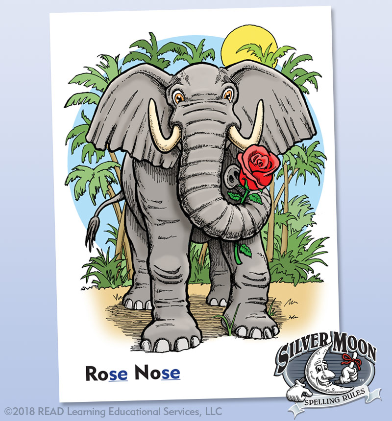 Visual Aids for Learning - Elephant Spelling Rule Card - Alberts Illustration